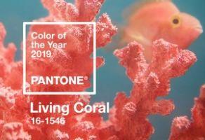 """Mettez du """"living coral"""" chez vous, couleur de l'année 2019"""