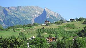 Investissement locatif Albertville Savoie